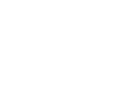 Zoe Myers Gallery Logo in white