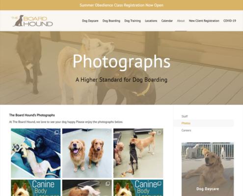 The Board Hound Website - Photographs